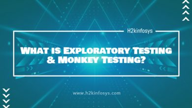 Photo of What is Exploratory Testing & Monkey Testing?