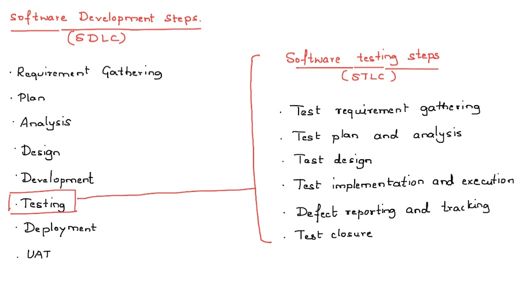 software testing steps