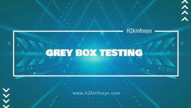 Photo of GREY BOX TESTING