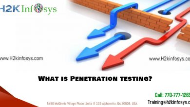 penetration testing by h2kinfosys
