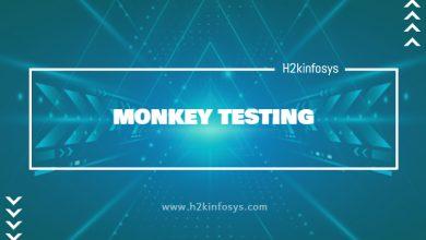Photo of MONKEY TESTING