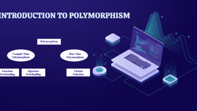 Photo of Introduction to Polymorphism
