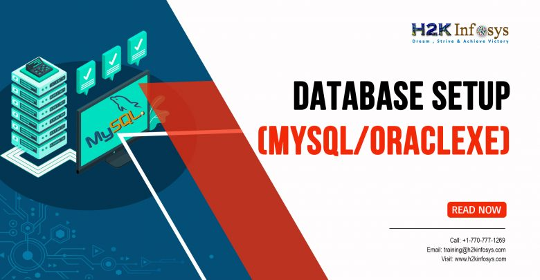 Database setup MySQL or OracleXE
