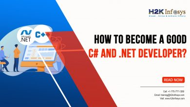 Photo of How to Become a Good C# and .NET Developer?