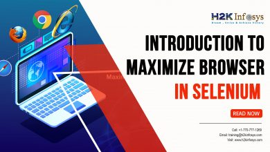 Photo of Introduction to Maximize Browser in Selenium