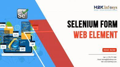 Photo of Selenium Form WebElement