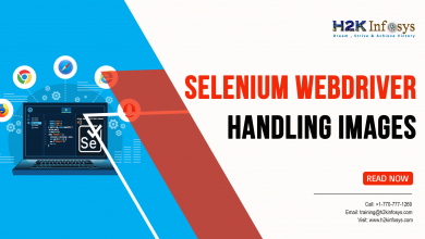 Photo of Selenium Webdriver – Handling Images