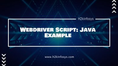 Photo of Webdriver Script: Java Example