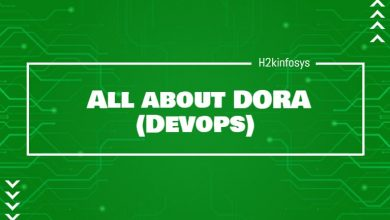 Photo of DORA (Devops)