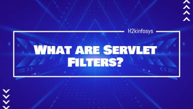 Photo of What are Servlet Filters?