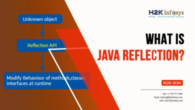 Photo of What is Java Reflections