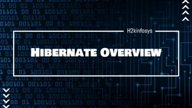 Photo of Hibernate Overview