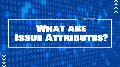 Photo of What are Issue Attributes?