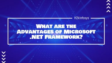 Photo of What are the Advantages of Microsoft .NET Framework?