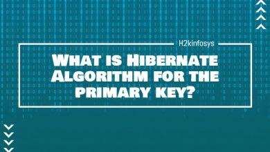 Photo of What is Hibernate Algorithm for the primary key?