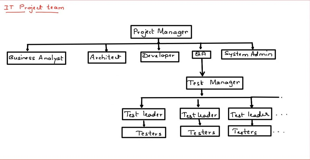 Roles of Test leader and Test manager in software testing process of IT projects
