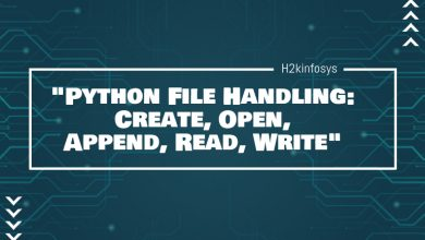 Photo of Python File Handling