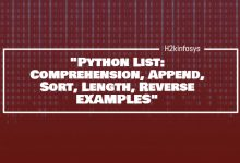 Photo of Python List: