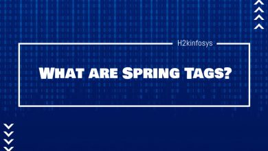 Photo of What are Spring Tags?