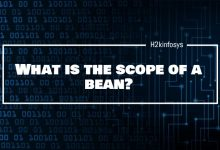 Photo of What is the scope of a bean?