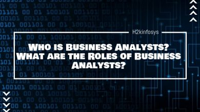 Photo of Who is Business Analysts? What are the Roles of Business Analysts?