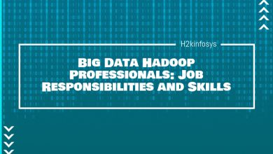 Photo of Big Data Hadoop Professionals: Job Responsibilities and Skills