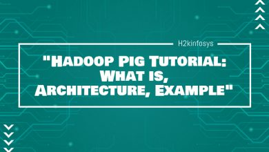 Photo of Hadoop Pig Tutorial: What is, Architecture, Example