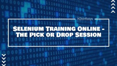 Photo of Selenium Training Online –  The Pick or Drop Session