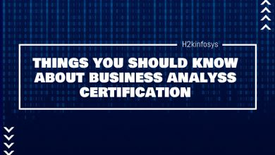 Photo of Things You Should Know About Business Analysis Certification
