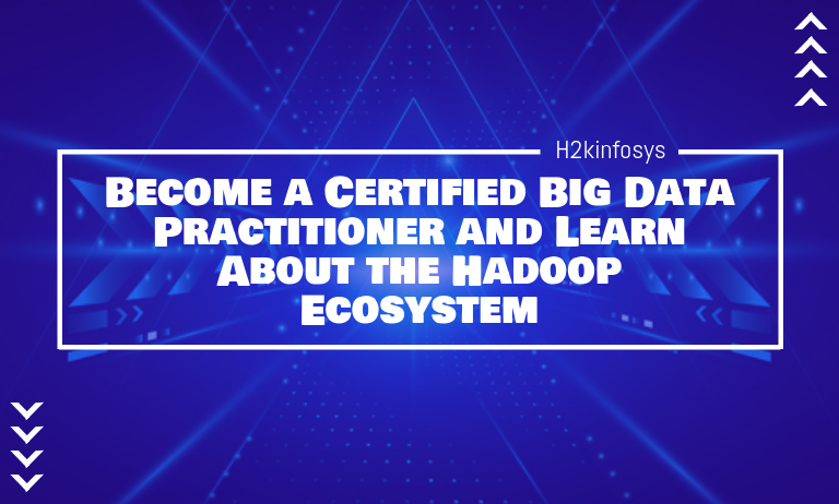 Become a Certified Big Data Practitioner and Learn About the Hadoop Ecosystem