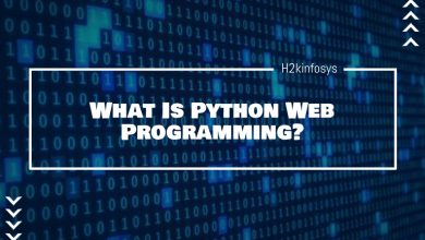 Photo of What Is Python Web Programming?