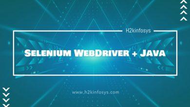 Photo of Selenium WebDriver + Java