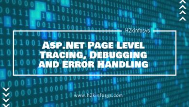 Photo of Asp.Net Page Level Tracing, Debugging and Error Handling