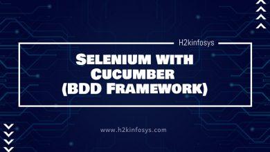 Photo of Selenium with Cucumber (BDD Framework)