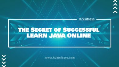 Photo of The Secret of Successful LEARN JAVA ONLINE