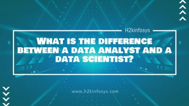 Photo of What is the difference between a data analyst and a data scientist?