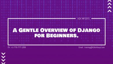 Photo of A Gentle Overview of Django for Beginners.