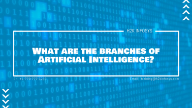 Photo of What are the branches of Artificial Intelligence?