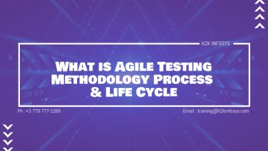 Photo of What is Agile Testing Methodology Process & Life Cycle
