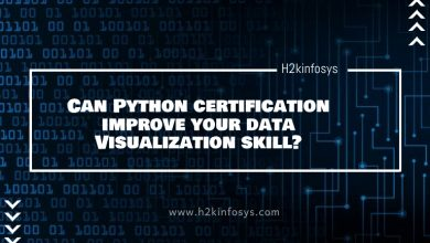 Photo of Can Python certification improve your data Visualization skill?