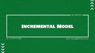 Photo of Incremental Model