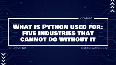 Photo of What is Python used for: Five industries that cannot do without IT