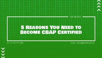 Photo of 5 Reasons You Need to Become CBAP Certified