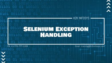 Photo of Selenium Exception Handling