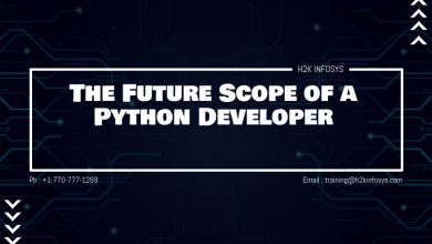 Photo of The Future Scope of a Python Developer