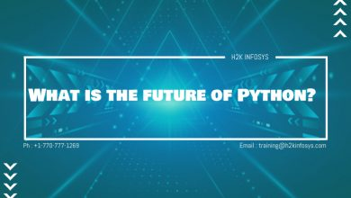 Photo of What is the future of Python?