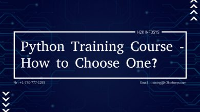 Photo of Python Training Course – How to Choose One?