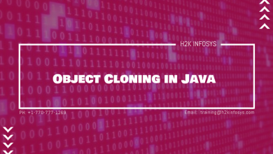 Photo of Object Cloning in Java