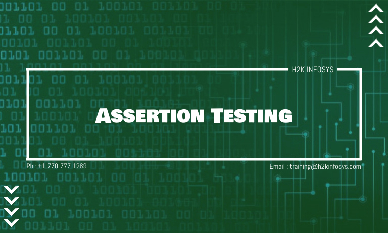 Assertion Testing